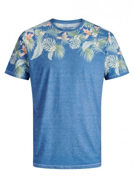 Camiseta Birds